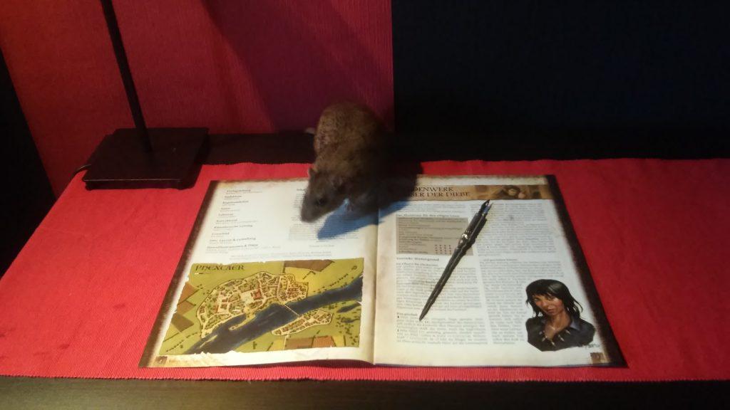 Kaiser der Diebe Ratte